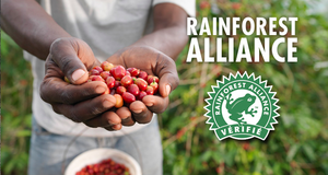 2014, année internationale de l'agriculture familiale - Rainforest Alliance